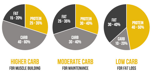 Protein Fat Carb Ratio For Muscle Building