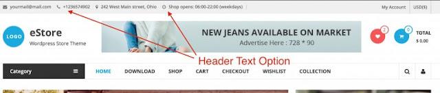 eStore Free Wordpress Theme For Amazing eCommerce sites