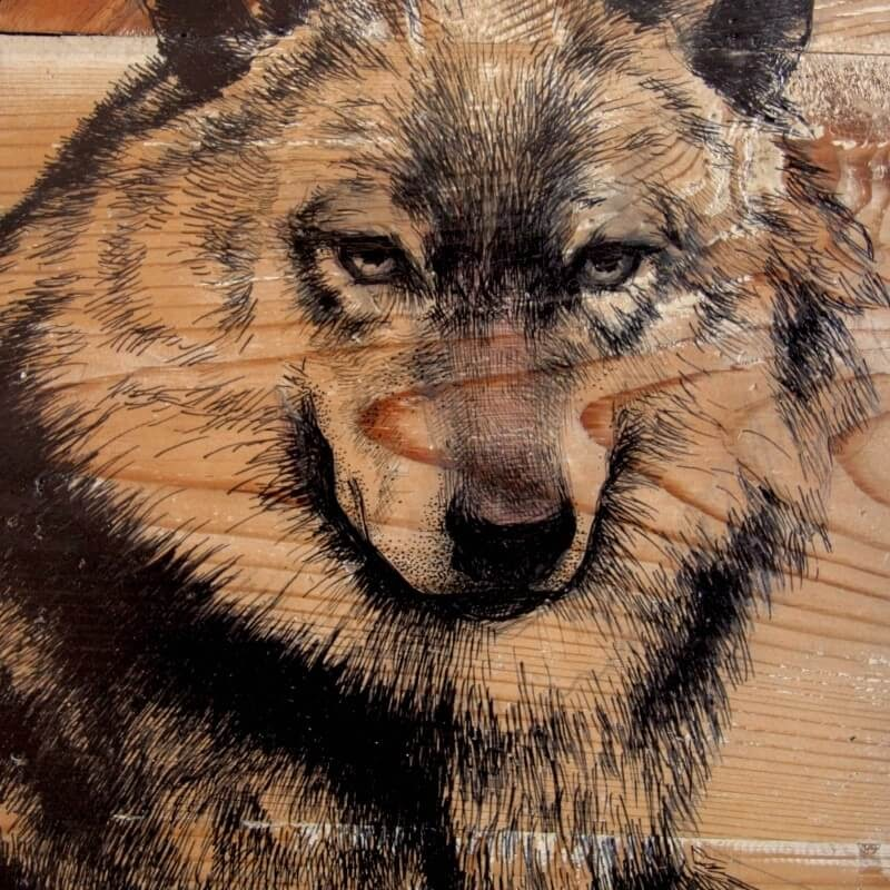 06-The-Wolf-Martina-Billi-Animal-Drawings-on-Recycled-Wooden-Planks-www-designstack-co