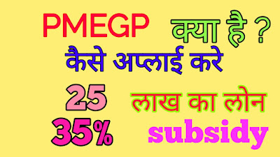 PMEGP क्या है ? How To  Apply PMEGP loan ? how to get 35 % subsidy PMEGP loan 1