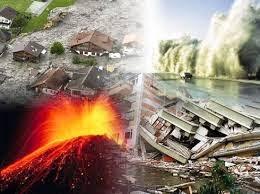 9 Binatang Meramal Bencana