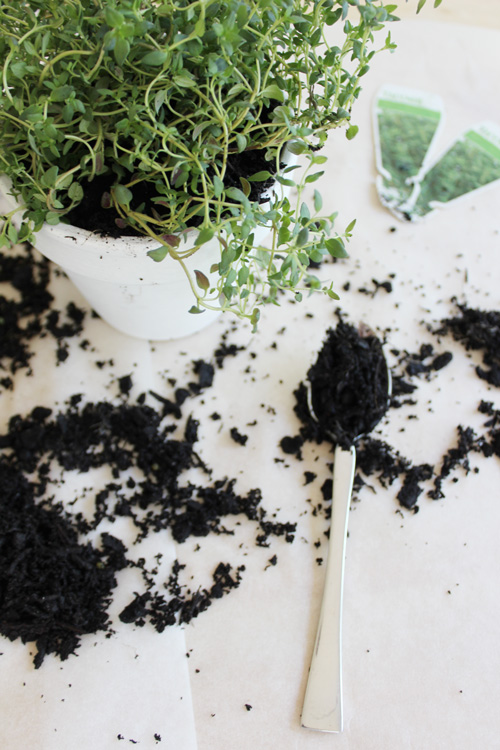 DIY Gifts: Herb Pots by Eliza Ellis