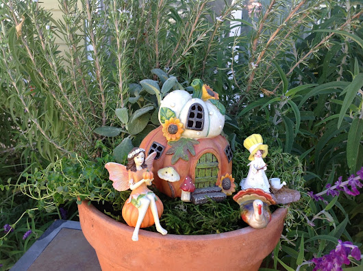 Fairy Garden Class - Herbs Anytime of Year