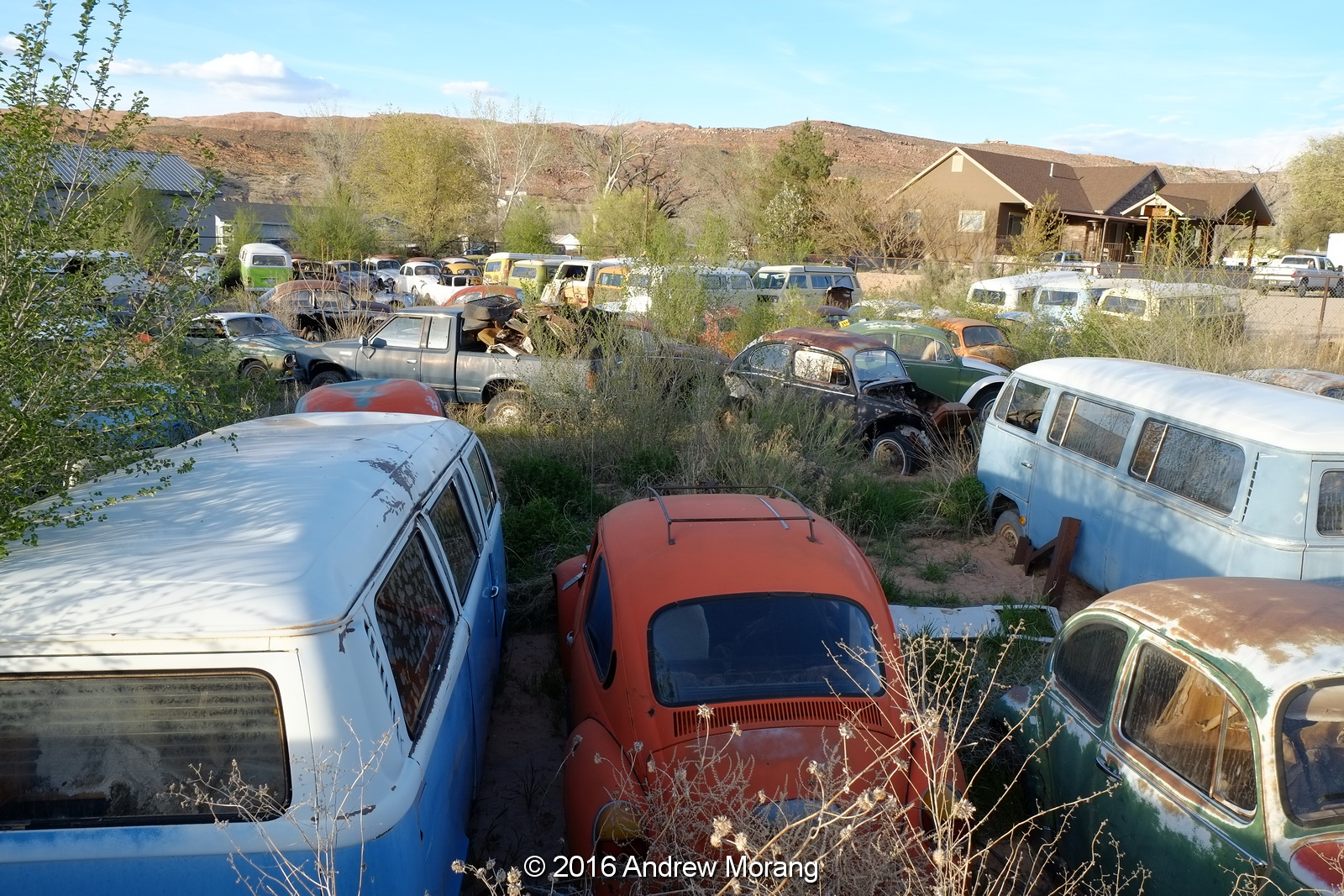 beetles vdub car last transporters tag nation row classic call in a volkswagen shows utah vw