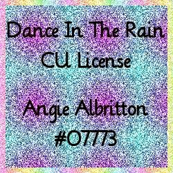 My CU CT License #