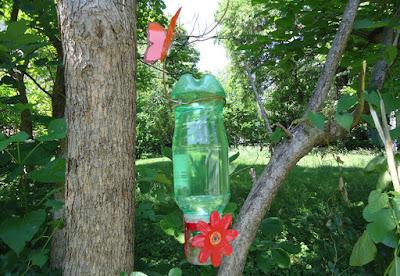 Hummingbird Feeder DIY