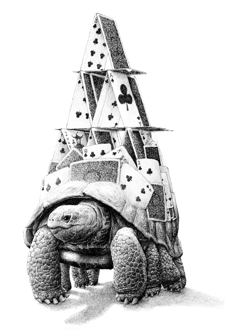 03-Tortoise-House-of-Cards-Redmer-Hoekstra-Surreal-Animal-Drawings-Pen-on-Paper-www-designstack-co