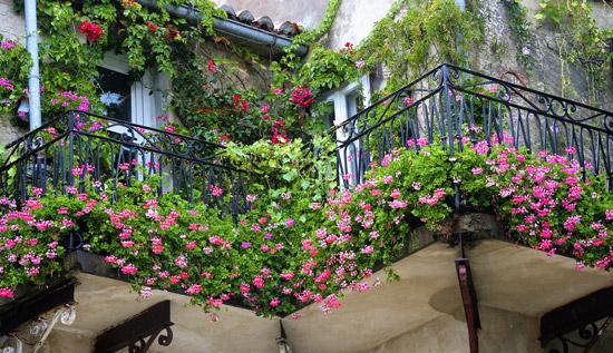 balkon bepflanzen balkongestaltung. Black Bedroom Furniture Sets. Home Design Ideas