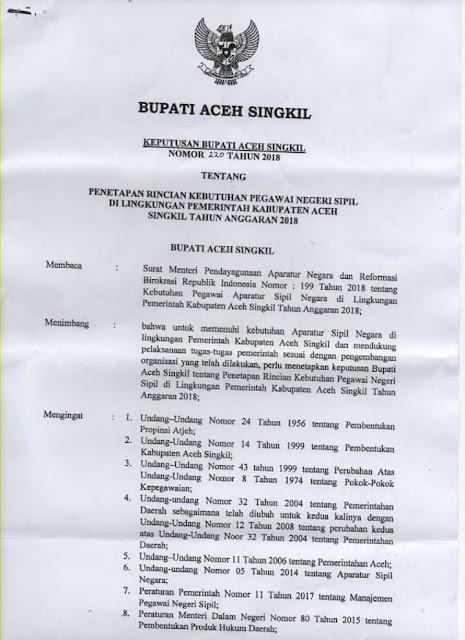 Formasi Penerimaan CPNS Kabupaten Aceh Singkil 2018