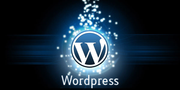 Top 10 Reasons – Why you should go for WordPress Premium Themes
