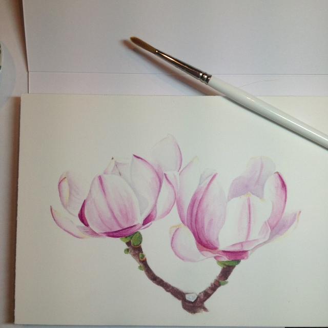 Schilderijen van orchidee n en andere botanische werken klein magnolia schilderijtje aquarel - Hoe om te schilderen een trap ...