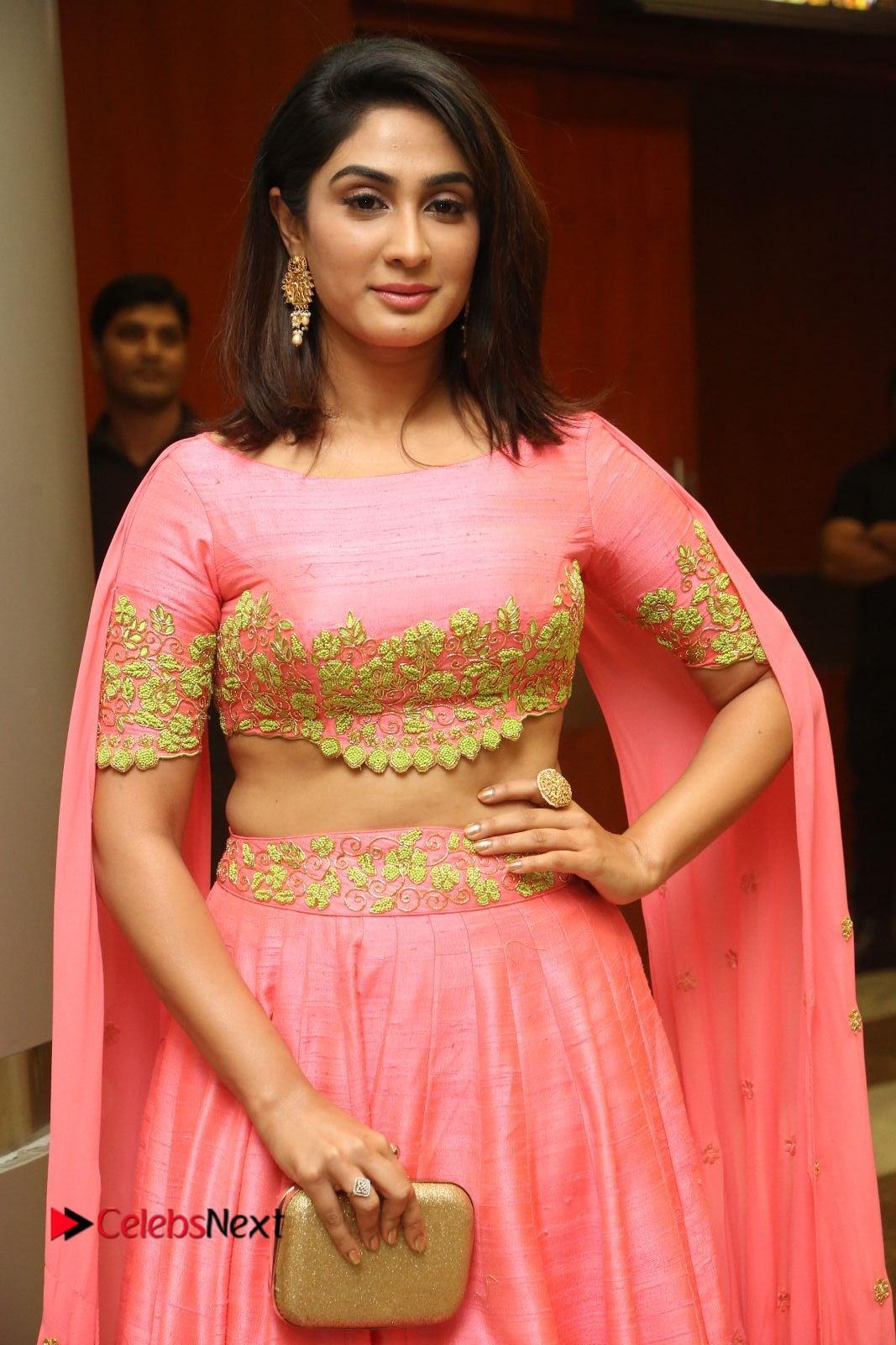Actress Deepthi Pictures at Jaguar Movie Audio Launch  0080.JPG