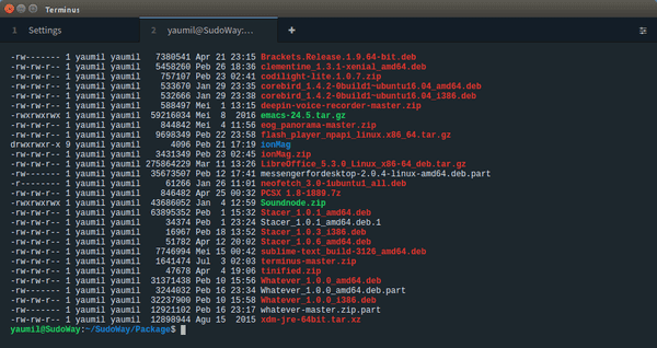 Terminus, Terminal Custom Modern ala Hacker Profesional