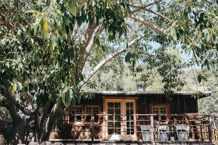 Leanne Ford's Dreamy Woodsy Cabin in Echo Park