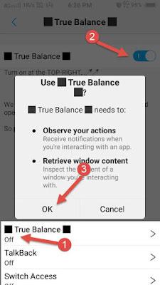 True Balance app setting