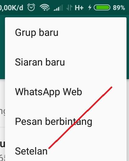 Cara Whatsapp Tidak Centang Biru
