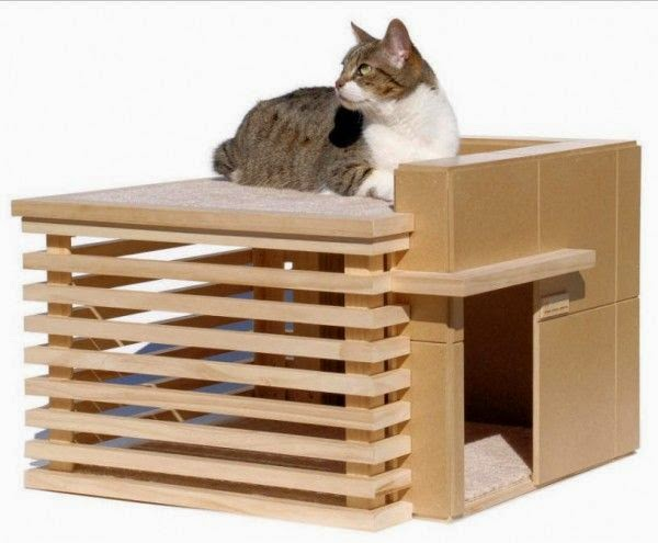 House for cats