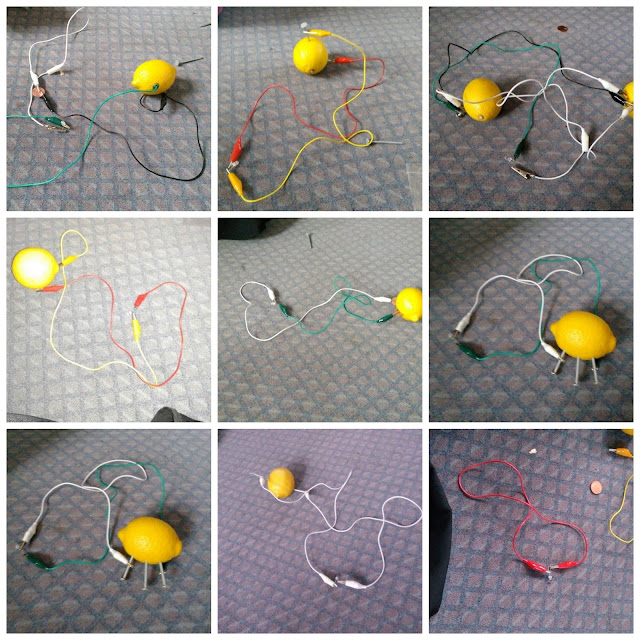 Home school class tries the lemon battery experiment