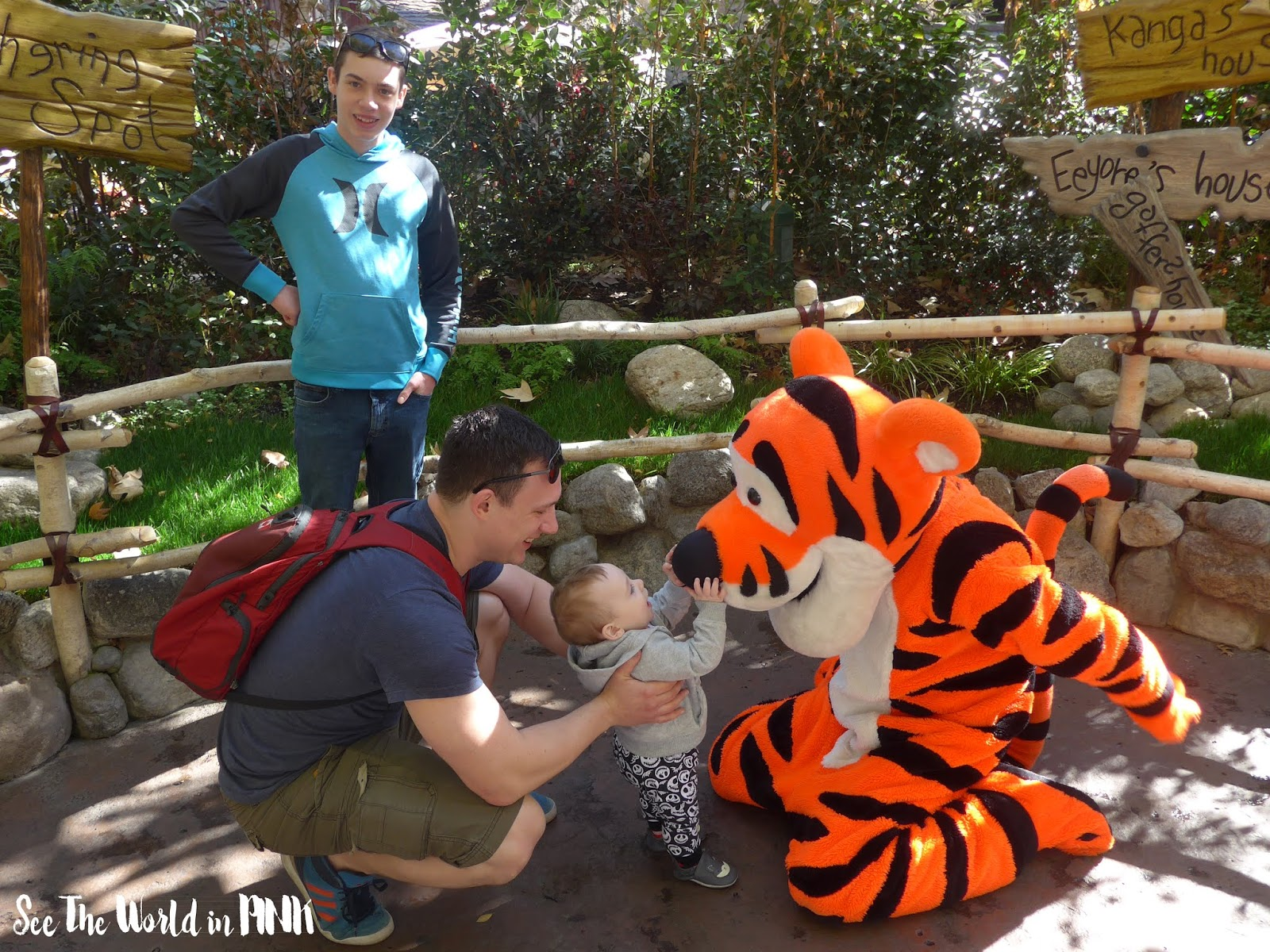 Travel Post - Disneyland ~ Anaheim, California + tips for travelling with a big family and a baby under 1!