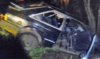 Manoel Ribas: Motorista perde o controle e bate em árvore