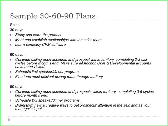 Resume Business Template 30 60 90 Day Sales Plan Template