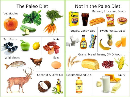 Planning Your Paleo Meals Is Key To A Successful Paleo Diet