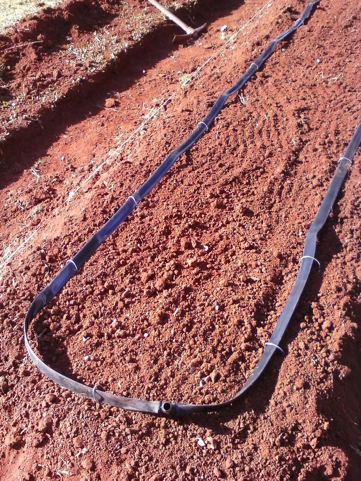 Come fare impianto di irrigazione finest irrigazione for Impianto irrigazione terrazzo leroy merlin