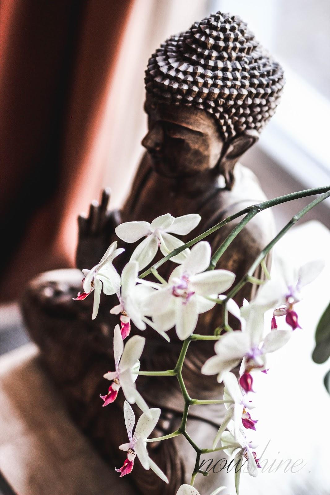 Ü40 Blog Nowshine - Lösch für Freunde - Kloster Hornbach - Rheinland Pfalz - Bloggerreise - Pressereise - Erfahrung und Eindrücke - Buddha
