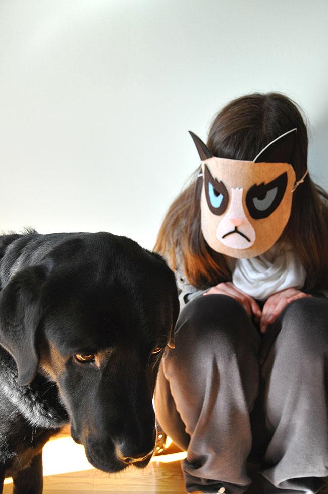 Diy Cat Mask: Snowdrop And Company: DIY Grumpy Cat Mask