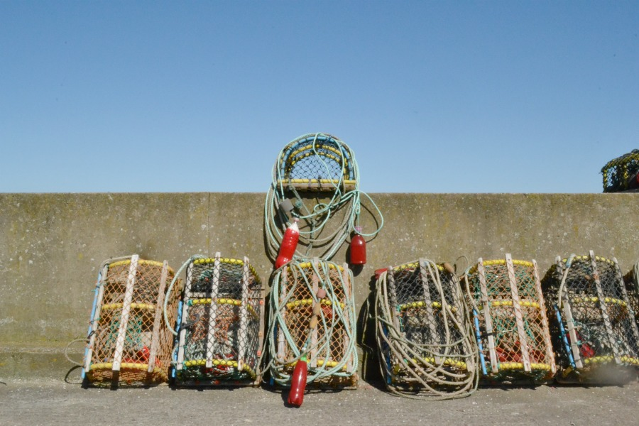 fishing pods nets cages harbour gourdon scotland angus coastal route seaside