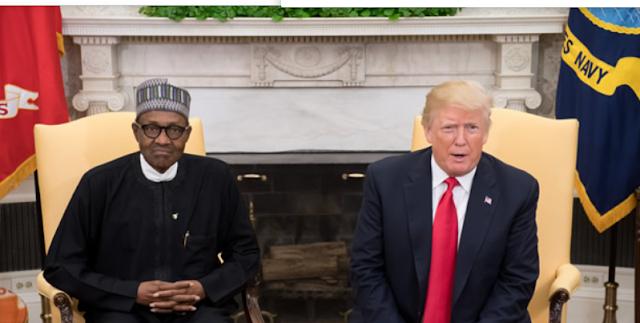 Trump decribes Buhari as 'lifeless' after the meeting