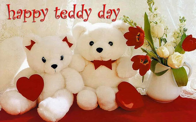 Teddy Day 2019 Wishes Images Status SMS Quotes in Hindi