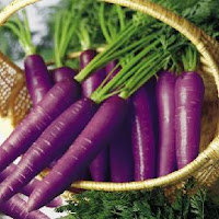 Benefits of Purple Vegetables and Fruits  for health