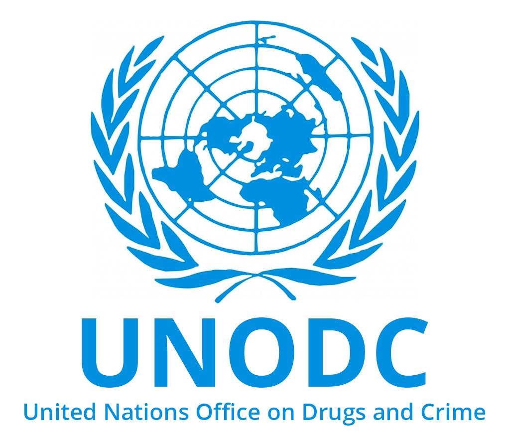 UN & NGO Jobs in Arab Countries: Procurement Internship