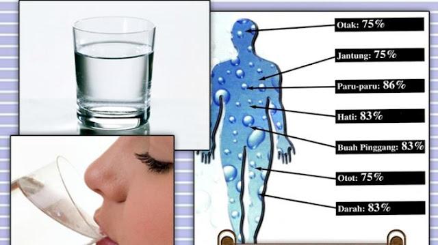 Haruskan Kita Minum Air Putih sebelum Tidur? Kamu Wajib Tahu!