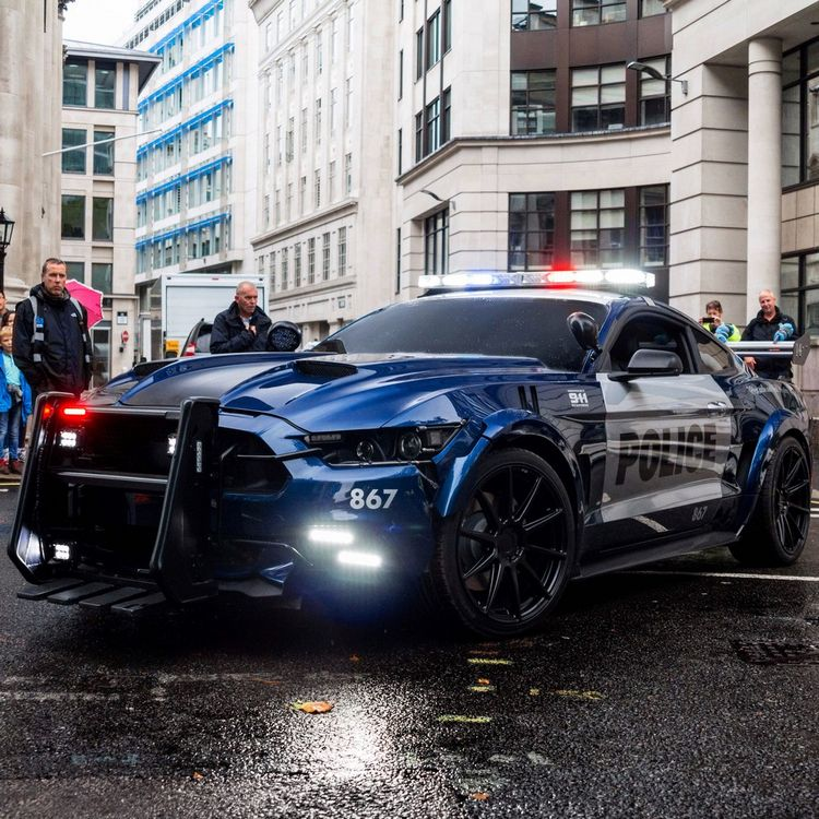 Mustang Police