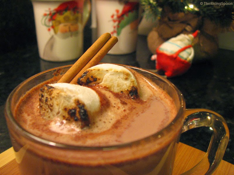 Homemade Spicy Hot Chocolate with Cacao Powder