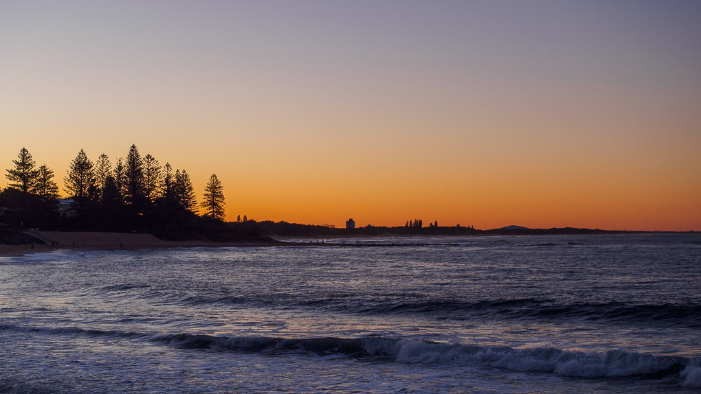 Sunset through the Norfolk Pines, Moffat Beach, Pacific Ocean