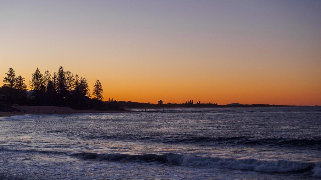 Sunset through the Norfolk Pines, Moffat Beach, Pacific Ocean