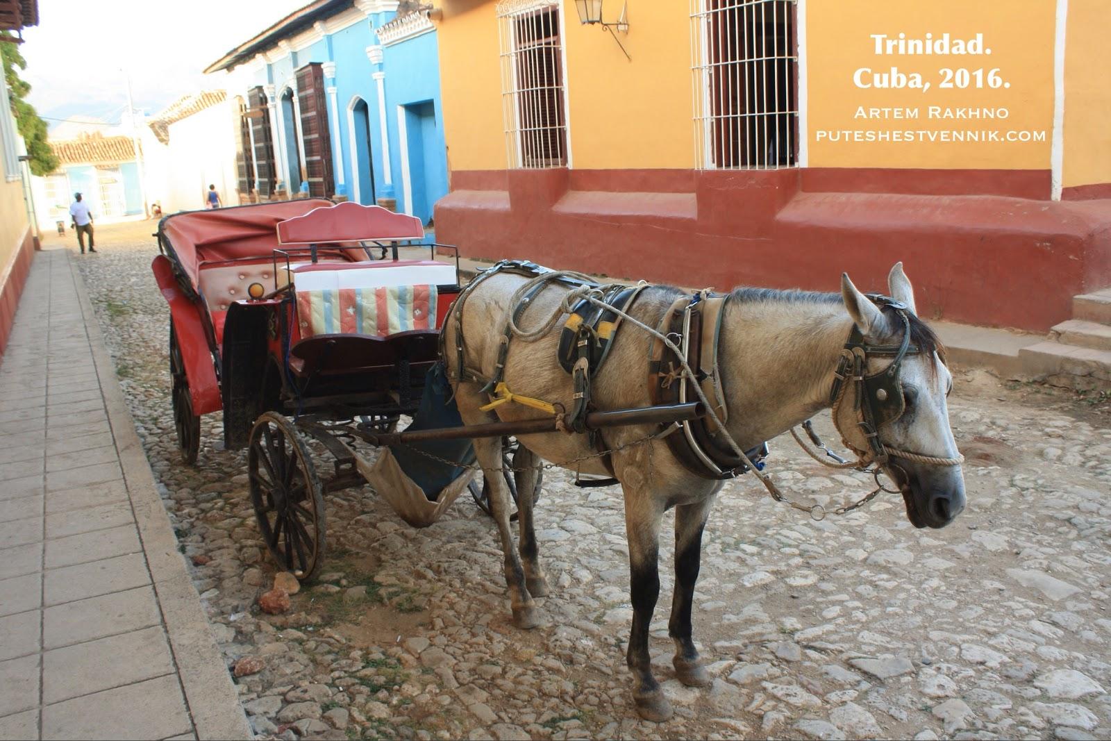 Лошадь и карета на улице кубинского города