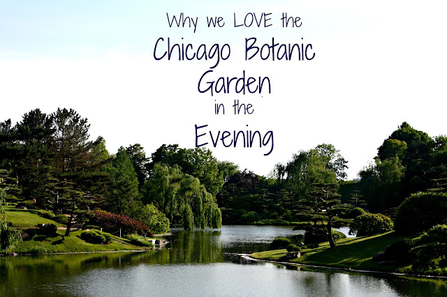 Chicago Botanic Garden in the Evening