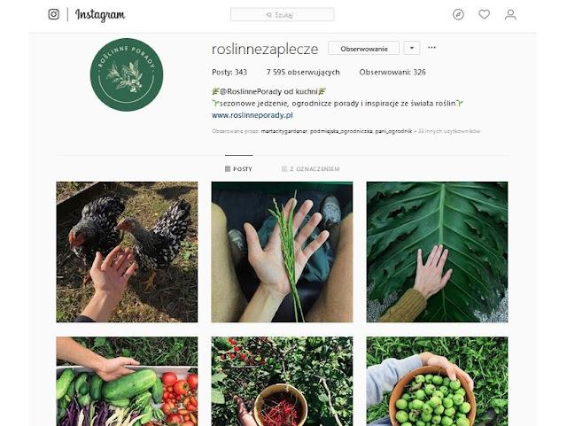 ogrodnicza konta, instagramowe profile, profil ogrodniczy, ogród przydomowy, na Instagramie, instagramowe profile ogrodnicze