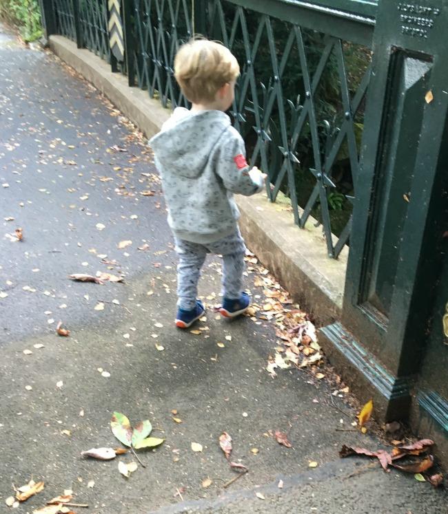 toddler-on-bridge-in-roath-park