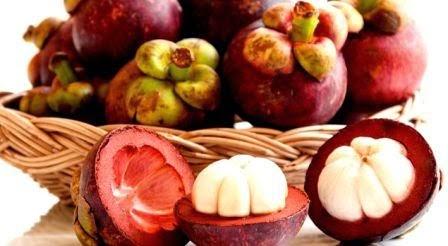 75 Manfaat Kulit Manggis untuk Kesehatan dan Kecantikan