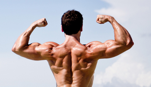 4 sai lầm tập cơ tay bạn thường mắc phải trong tập thể hình