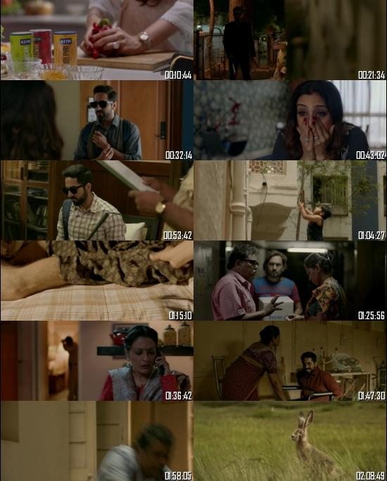 Andh@dhun 2018 Hindi 720p 480p BRRip