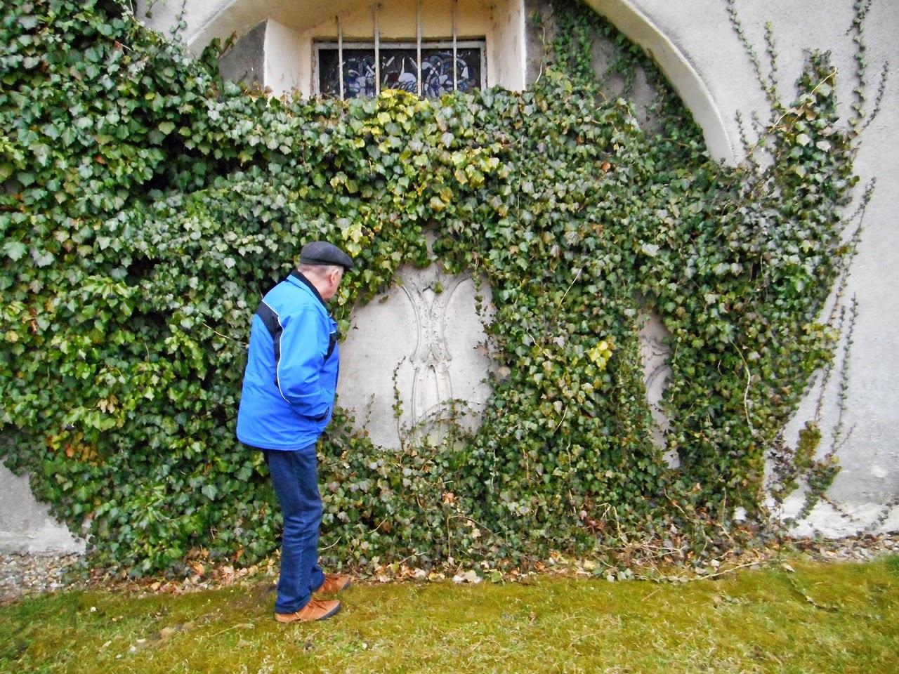 sekrety, kościół, rośliny, odkrywanie tajemnic