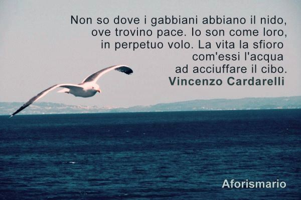 Famoso Aforismario®: Gabbiani - Aforismi, frasi e citazioni GT05