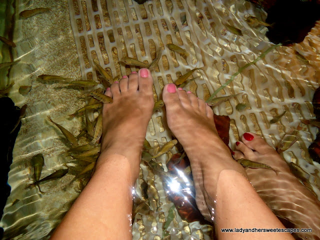 feet dipped in the spa at Tibiao Fish Spa