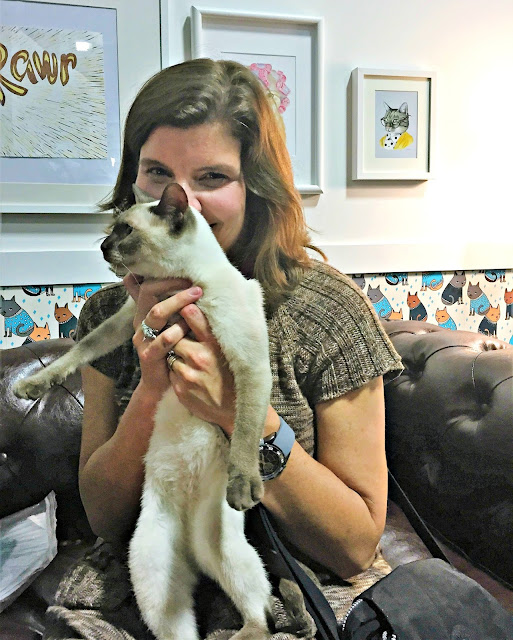 Elizabeth Keene holding young siamese cat in front of her face on sofa in Cat Experience Room of Purina Better With pets Summit 2015